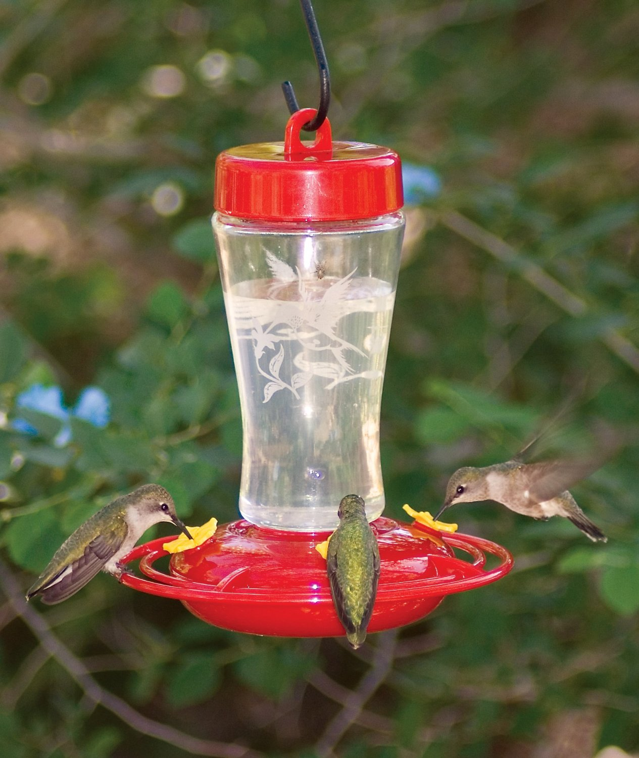 decorative buy hummingbird for feeder sale set feeders blown of glass droplet