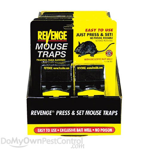 Revenge Press & Set Mouse Traps