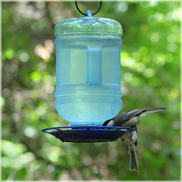 Perky Pet Water Cooler Bird Waterer 5 Qt 780