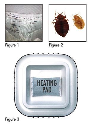 bed bug travel kit