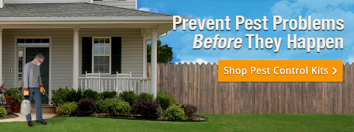 Prevent Pest Problems Before They Happen!