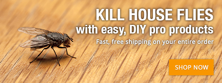 Kill flies now with products the pros use!