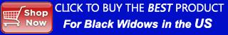mobile black widow spider control banner