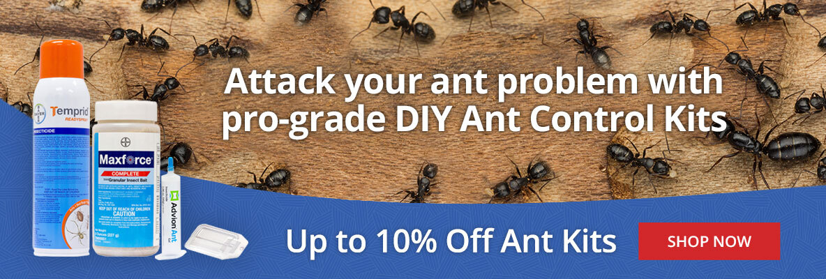 DIY Ant Control Kits -up to 10% off Ant Kits -Shop Now
