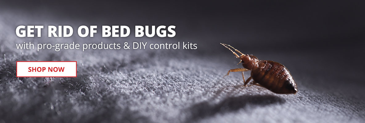 Get Rid of Bed Bugs with pro-grade products and DIY control kits