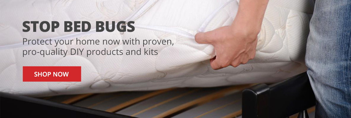 Stop Bed Bugs & Protect Your Home with DIY Products & Kits