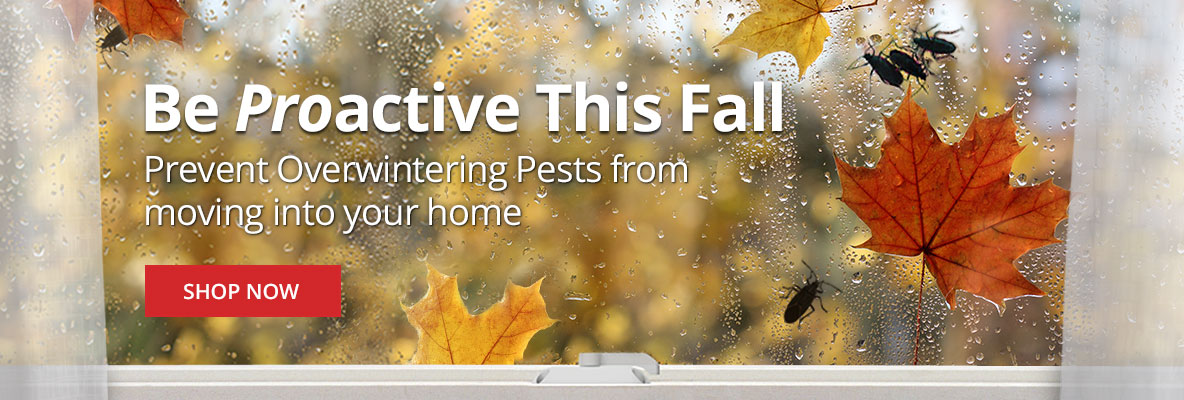Be Proactive this Fall -Prevent overwintering pests from moving into your home -Shop Now