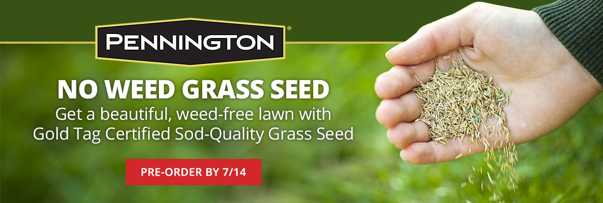 Pre-Order Pennington Sod-Quality Gold Tag Grass Seed
