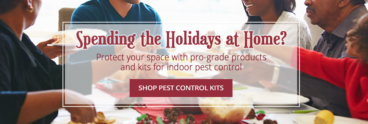 Protect your space with pro-grade products and kits for indoor pest control -Shop Now