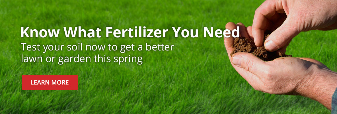 Test Your Soil to Know What Type of Fertilizer Your Lawn or Garden Needs