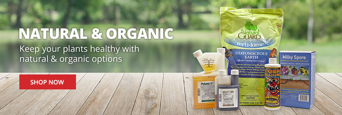 Keep your plants healthy with natural and organic products