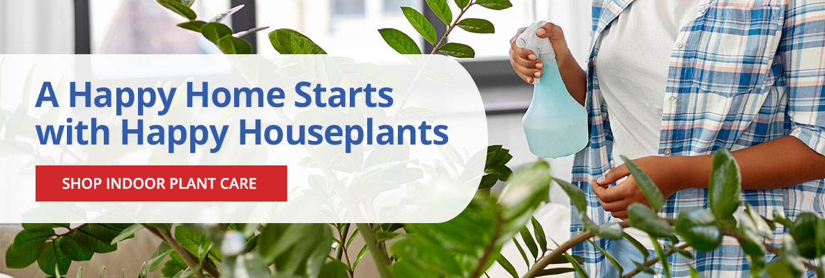 Happy Houseplants- Shop Indoor Plant Care