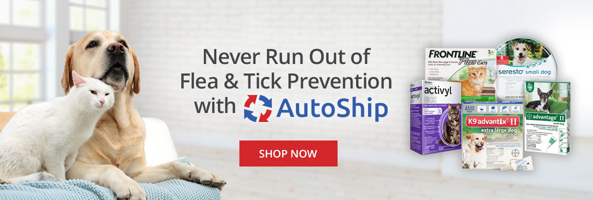 Never Run Out of Pet Flea & Tick Prevention with Autoship at DoMyOwn.com