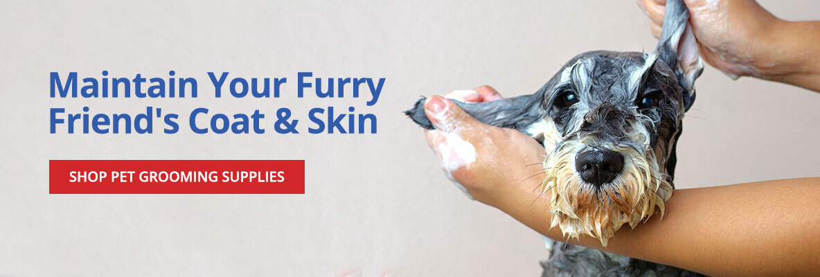 Maintain your Pet's Coat and Skin -Shop Pet Grooming Supplies