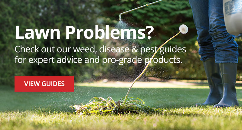 Check out our weed, disease, & pest guides for expert advice and pro-grade products