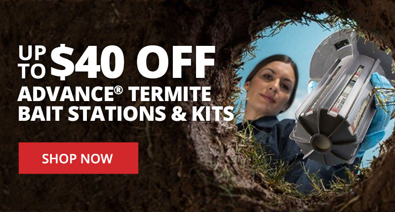 Save up to $40 off Advance Termite Bait Stations and Kits