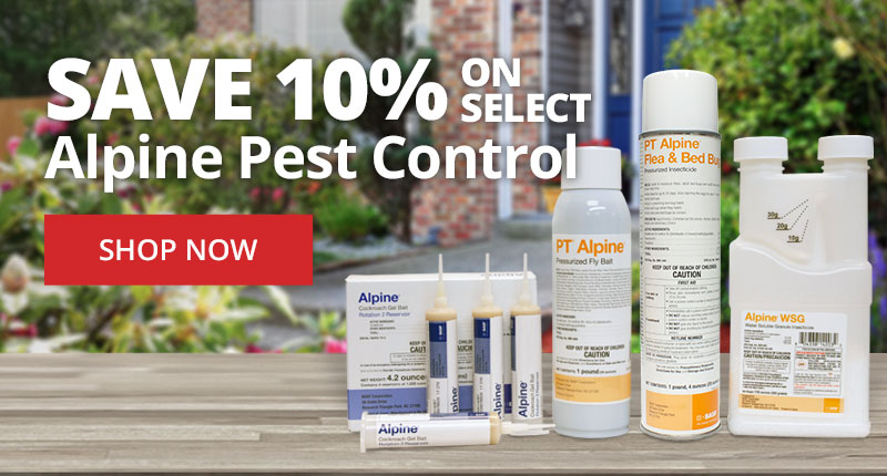 Save 10% on Select Alpine Pest Control