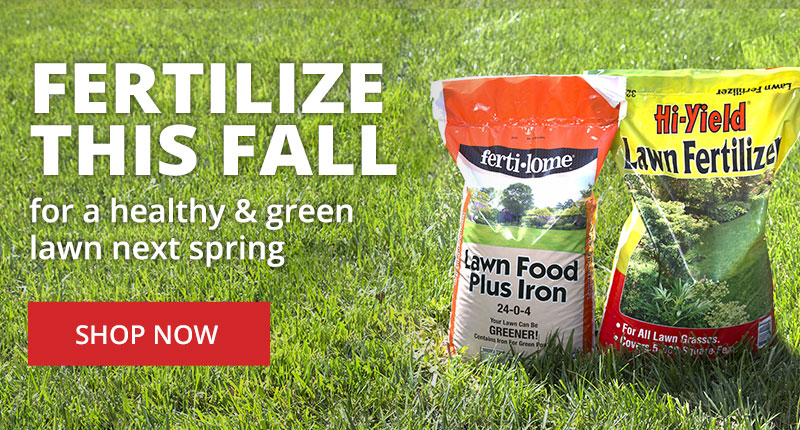 Fall Fertilizers to fertilize this fall