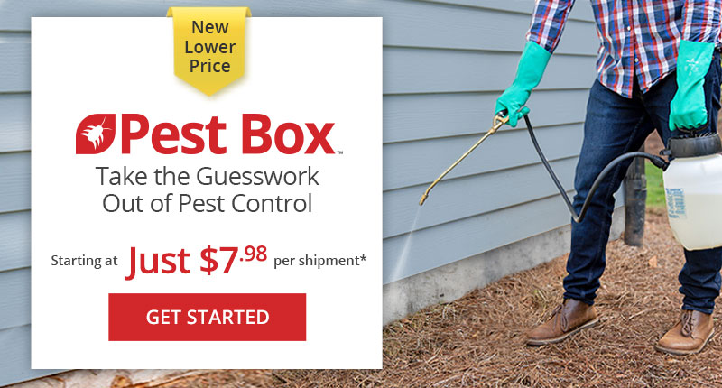 Sign Up for DoMyOwn Pest Box - Customized DIY Pest Control Subscription Program - Starting at $9.98/month + Free Shipping