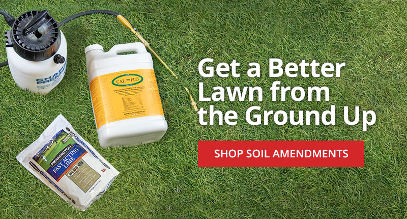 Get Healthy Grass From the Ground Up with Soil Amendments