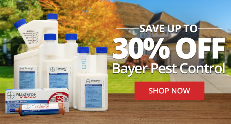 Save up to 30% off Bayer Pest Control at DoMyOwn.com