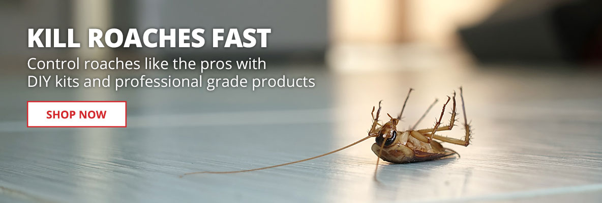 Kill Roaches Fast - Control roaches like the pros with DIY kits and professional grade products