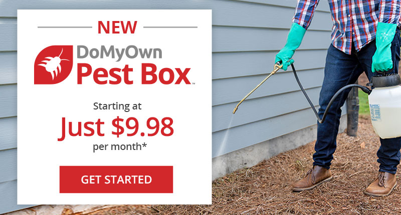 Save with Customized DIY Pest Control Subscription Program + Free Shipping - DoMyOwn