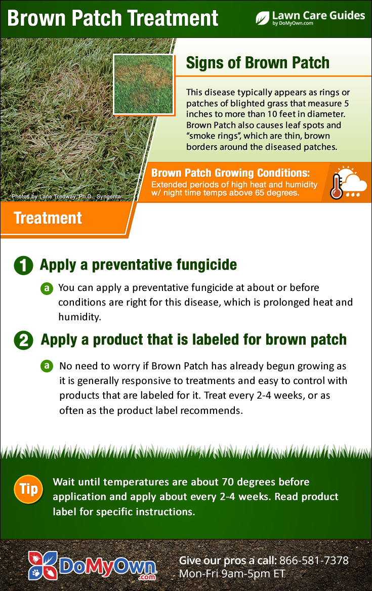 Termite Pest Control - Termites - Do It Yourself Termite Baiting Systems. Welcome to Do-It-Yourself Termite Control, a division of Do-It-Yourself Pest Control, Inc. your best resource for pest control supplies for residential and commercial control of pests, including termite treatment.. For the last 33 years, customers in our stores and visitors to our website have asked,