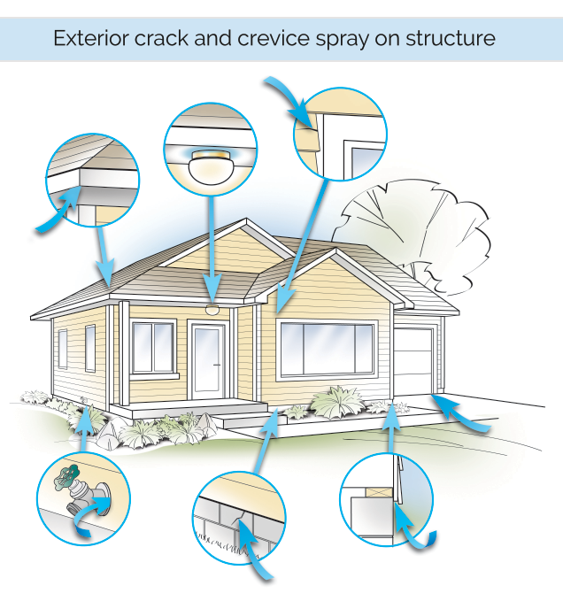 Preventive Pest Control Treatment