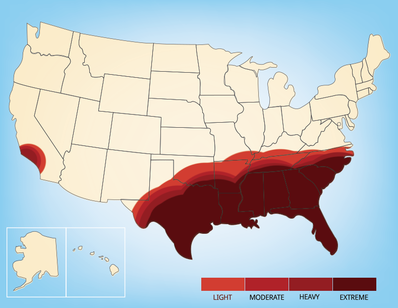 Fire Ants Are Usually Found In The Southeast
