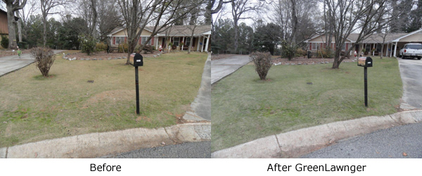 grass paint before and after picture