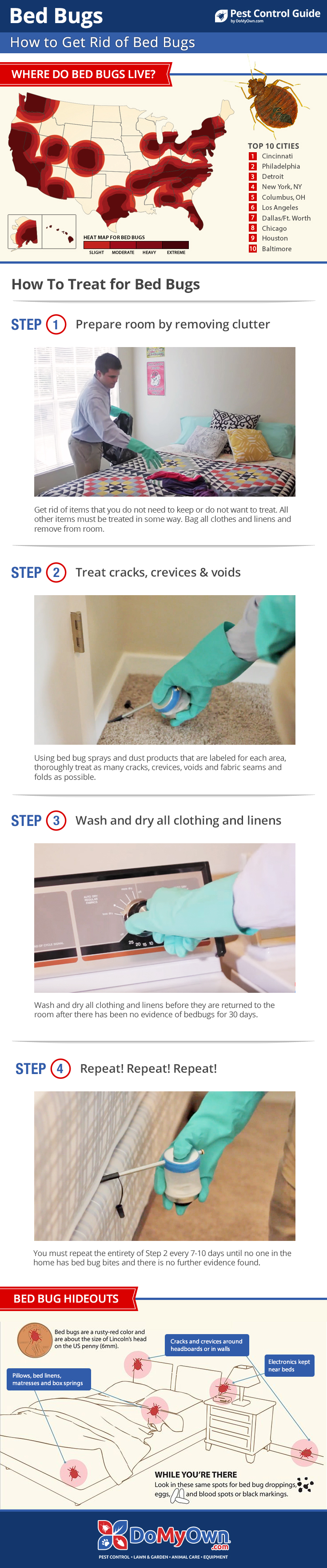 How To Get Rid of Kill Bed Bugs Your StepByStep Guide