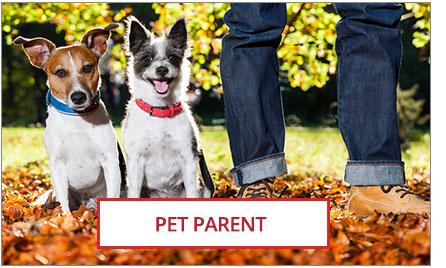 Pet Parent