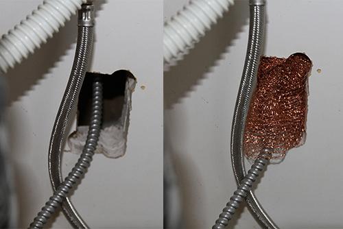 stuf-fit copper mesh blocking hole in wall under kitchen sink