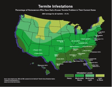 Termites All About Termites Facts Life Cycle Reproduction - Us termite map