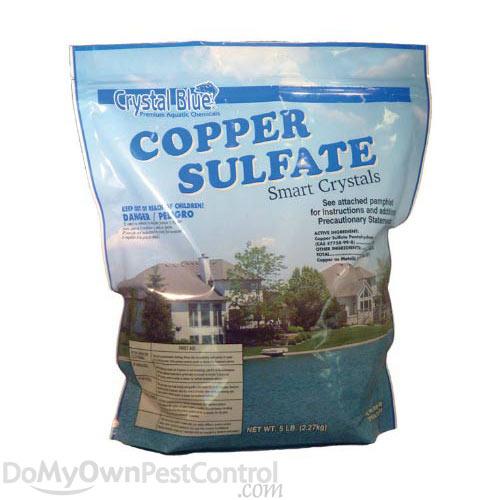 how to make copper sulfate crystals at home