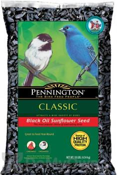 Pennington Seed Black Oil Sunflower Bird Seed