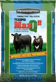 Pennington Max Q II Texoma Forage Tall Fescue