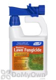 Monterey Lawn Fungicide RTS