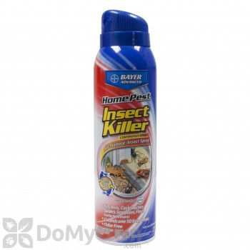 Bayer Home Pest Insect Killer
