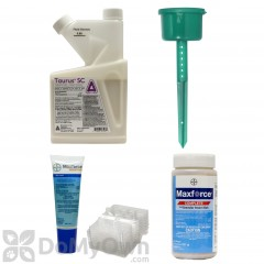 Outdoor Ant Kit