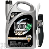 Roundup Ready-To-Use MAX Control 365 with Comfort Wand