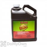 Killzall Weed and Grass Killer - 41% Glyphosate - Gallon