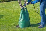 Garden Wizard Tree Bag