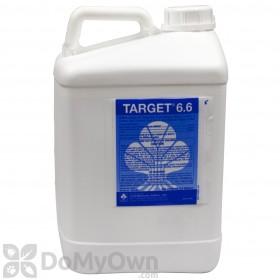 MSMA Target 6.6