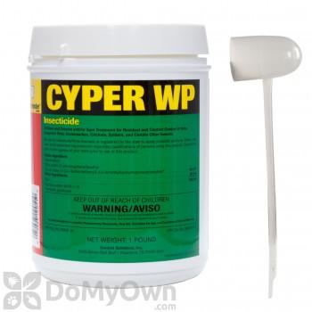 Cyper WP