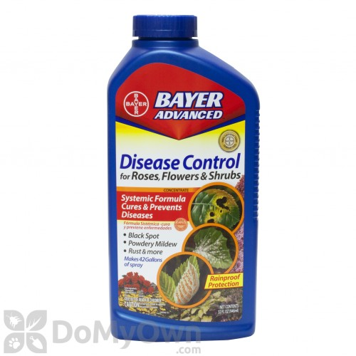 Bayer Advanced Disease Control For Roses Flowers Amp Shrubs