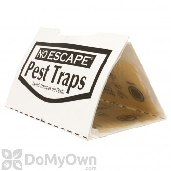 Revenge Glue Traps for Rats