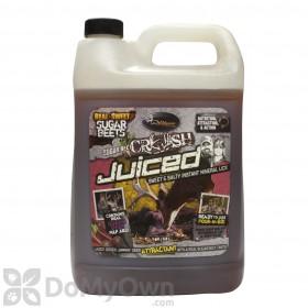Sugar Beet Crush Juiced