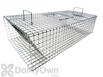 Tomahawk Collapsible Pigeon Two Trap Door Trap - Model 502